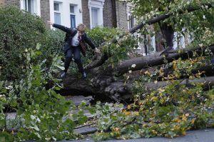 Stromy popadané na ulicích a silnicích zastavili většinu dopravy.