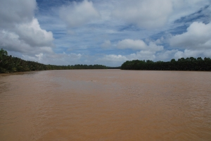 Řeka Kinabatangan.