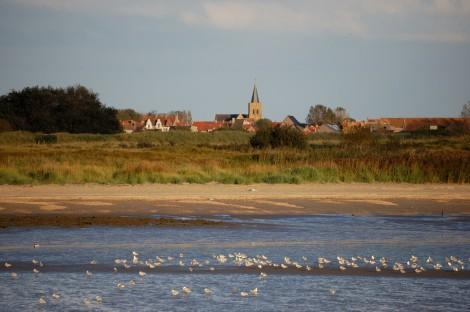 Pobřežní bažiny severně od přístavu jsou ptačí rezervací.